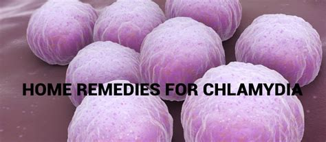 Safe Home Remedies for Chlamydia - Women Daily Magazine