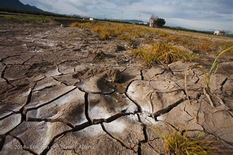 Preventing and Remediating Soil Degradation (RECARE